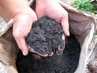灰の上澄み液は草木染の媒染液として